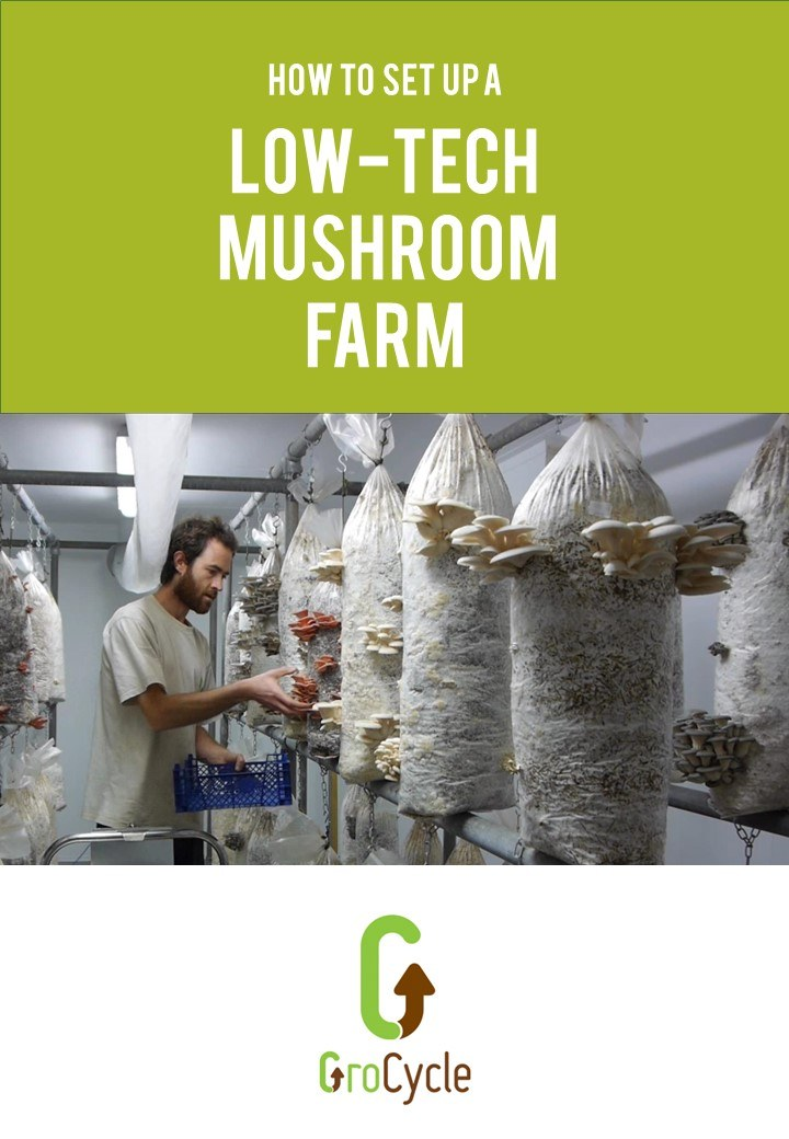 How To Set Up A Low Tech Mushroom Farm Grocycle