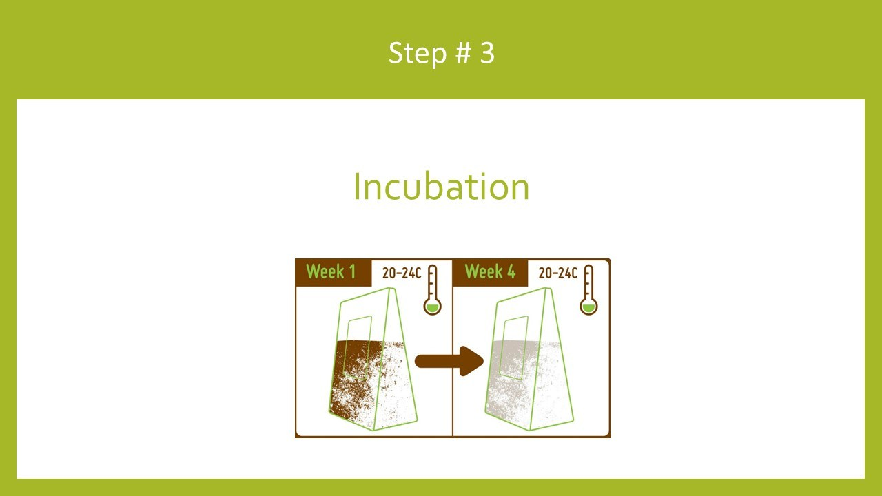 Incubate growing bags