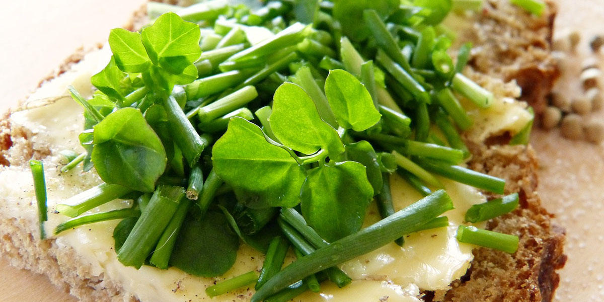Watercress for health
