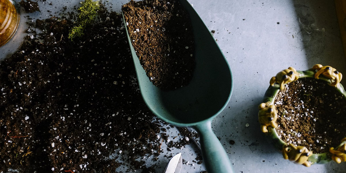 soil from the garden
