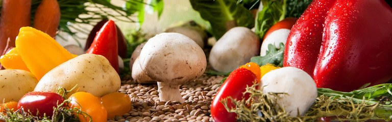 Header: Health and Nutritional Benefits Of Mushrooms