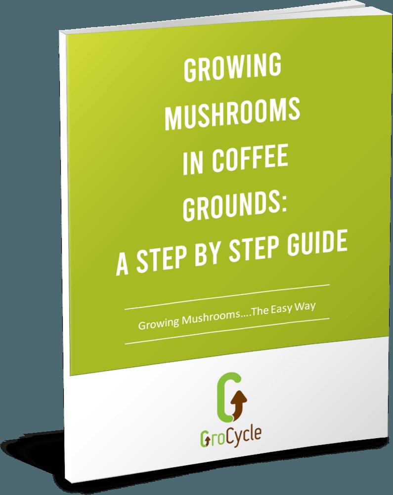 Growing Mushrooms In Coffee Grounds