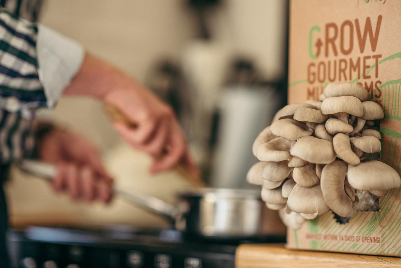 Grocycle mushroom kit