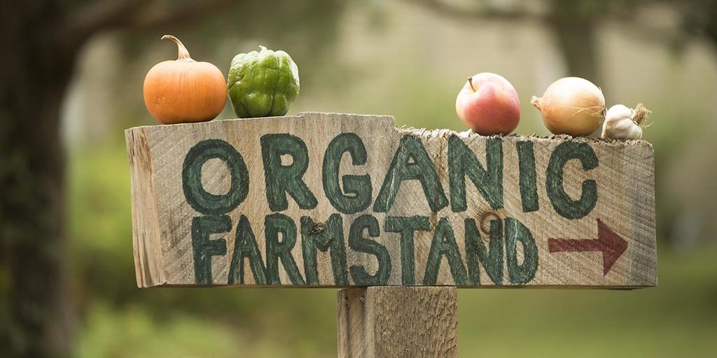 Where Do Market Gardens Sell Their Goods
