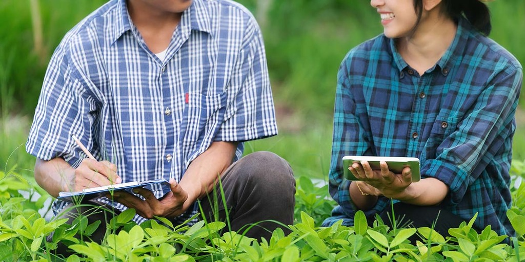 Questions To Ask Yourself Before Picking An Online Permaculture Design Course