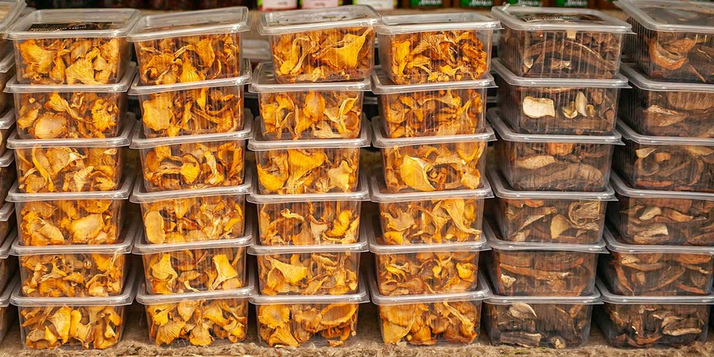 Storing Chanterelle Mushrooms