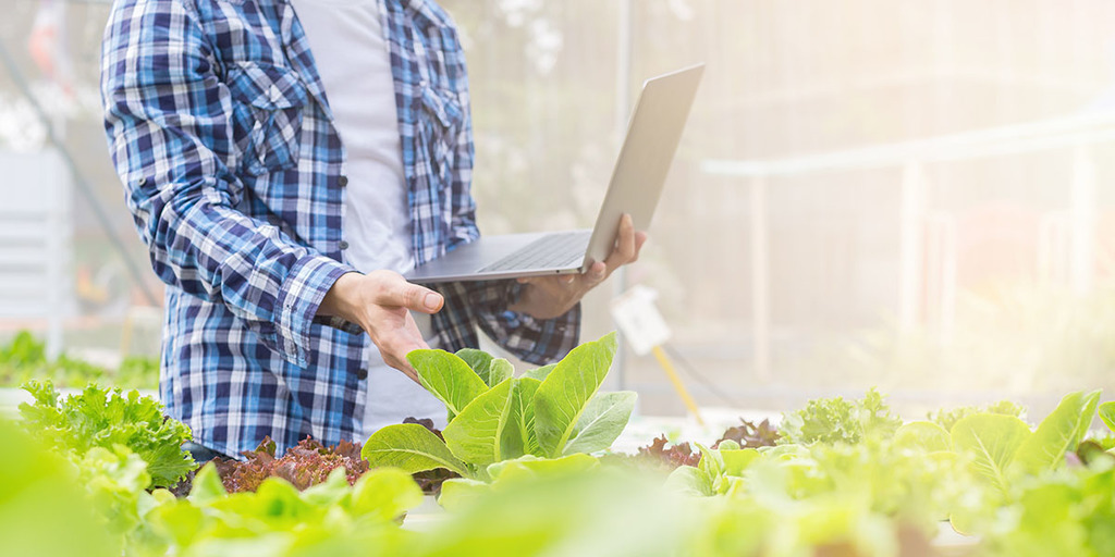 The Benefits of Completing An Online Permaculture Design Course