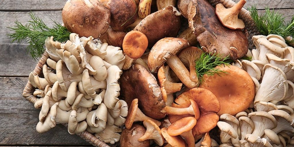 What Other Fungi In Their Diet Should Vegans Take Into Consideration