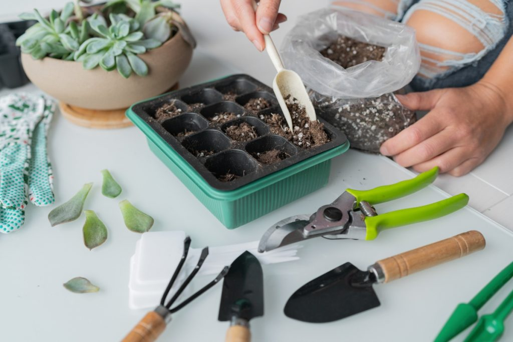 tools required to propagate plants