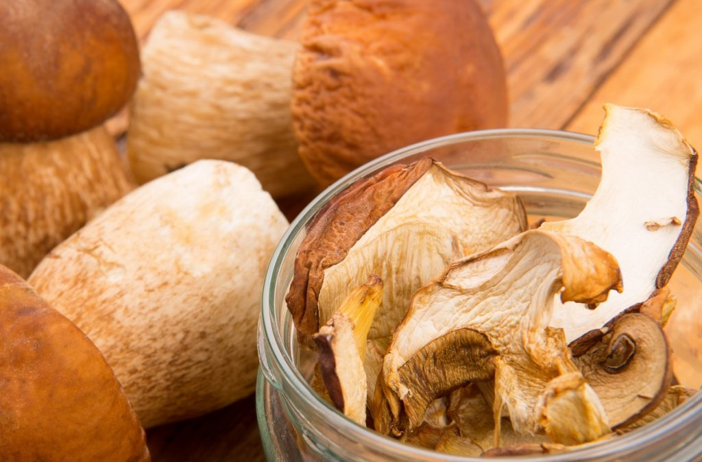 Porcini mushrooms are one of the most expensive mushrooms