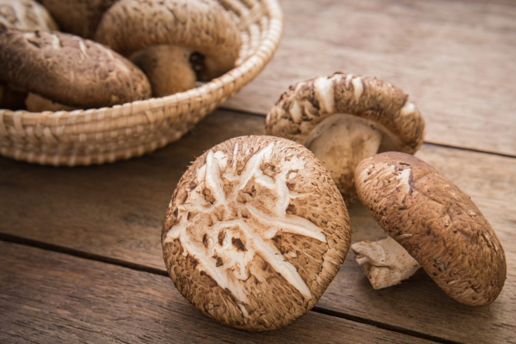 Shiitake mushrooms are one of the most expensive mushrooms