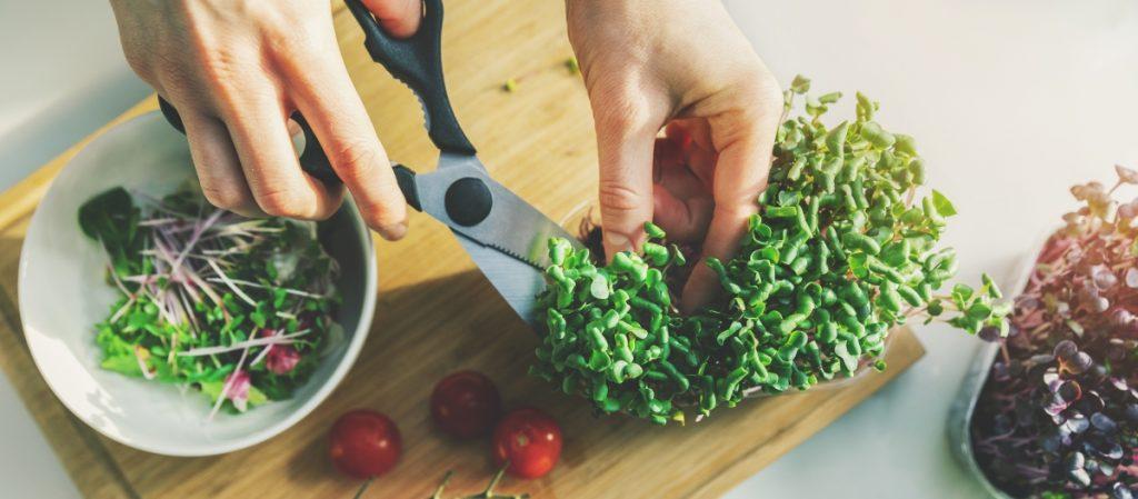 Do microgreens regrow after cutting?
