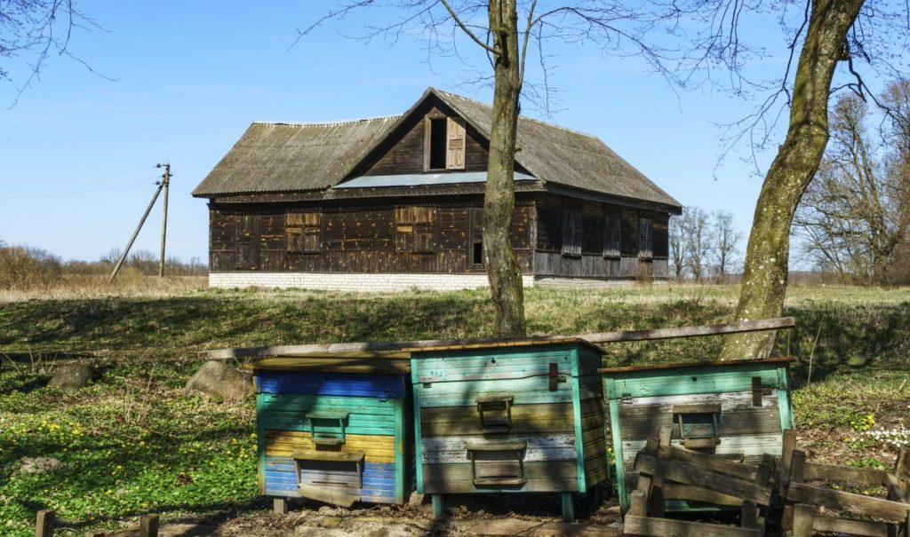 Learn about beekeeping for profit on a homestead