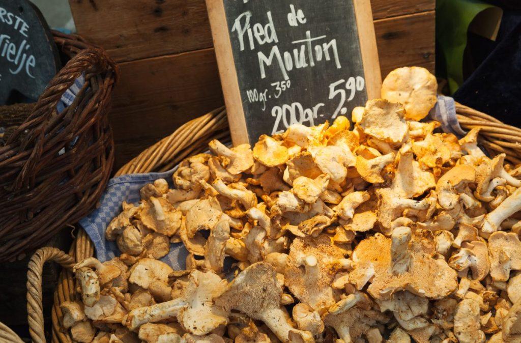 Hedgehog mushrooms for sale at a market.