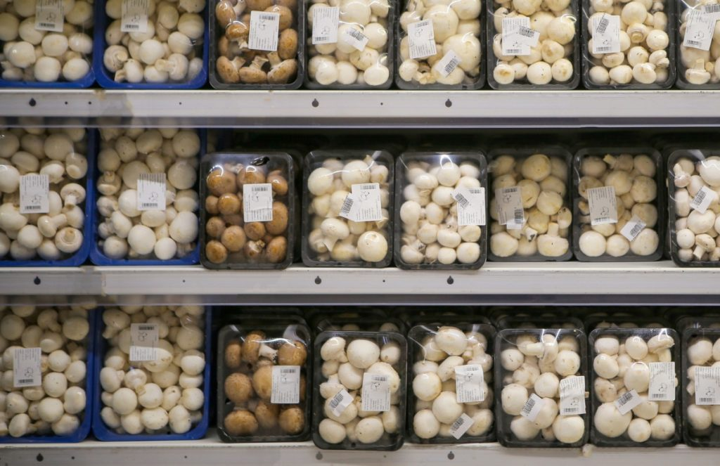 Mushrooms for sale in a retail store.