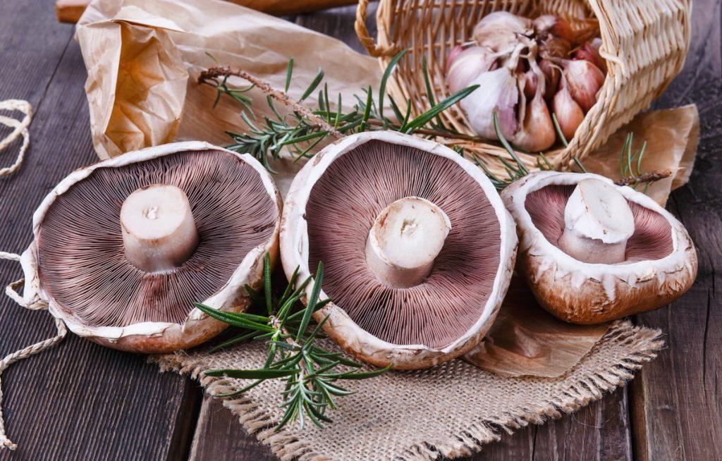 The dark gills of mature portobello mushrooms.