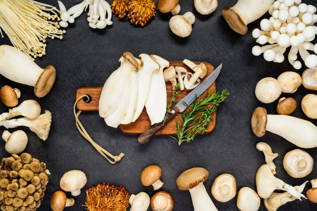 A selection of different edible mushrooms.